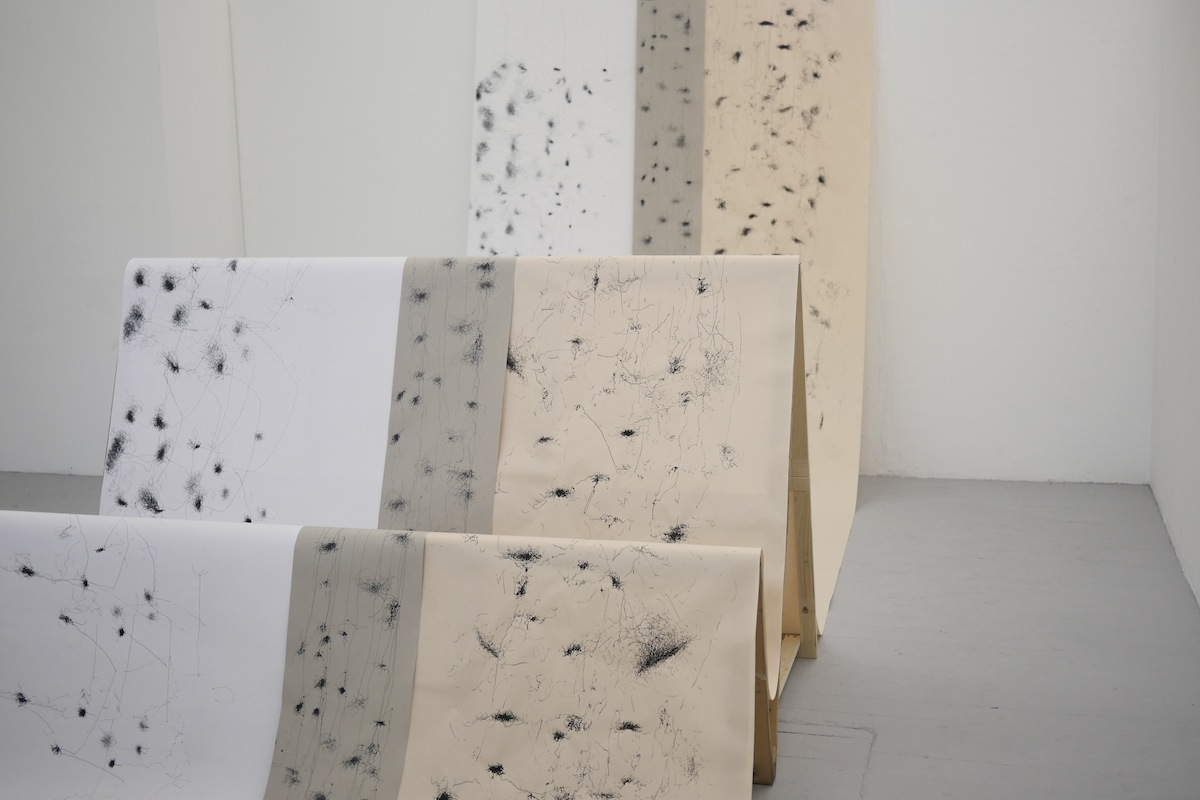 Muireann Kelleher's Labour of the Months, installation view.