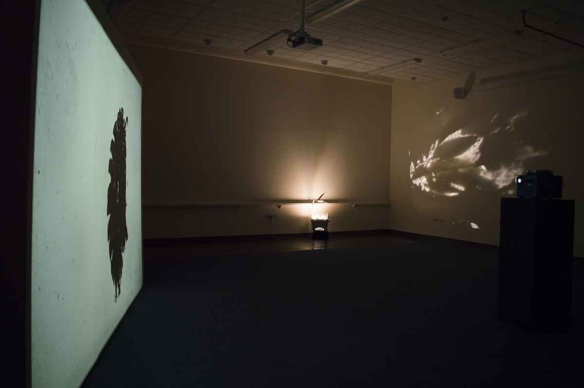 Aoife Fogarty, Engulf, installation view, image courtesy of the artist.