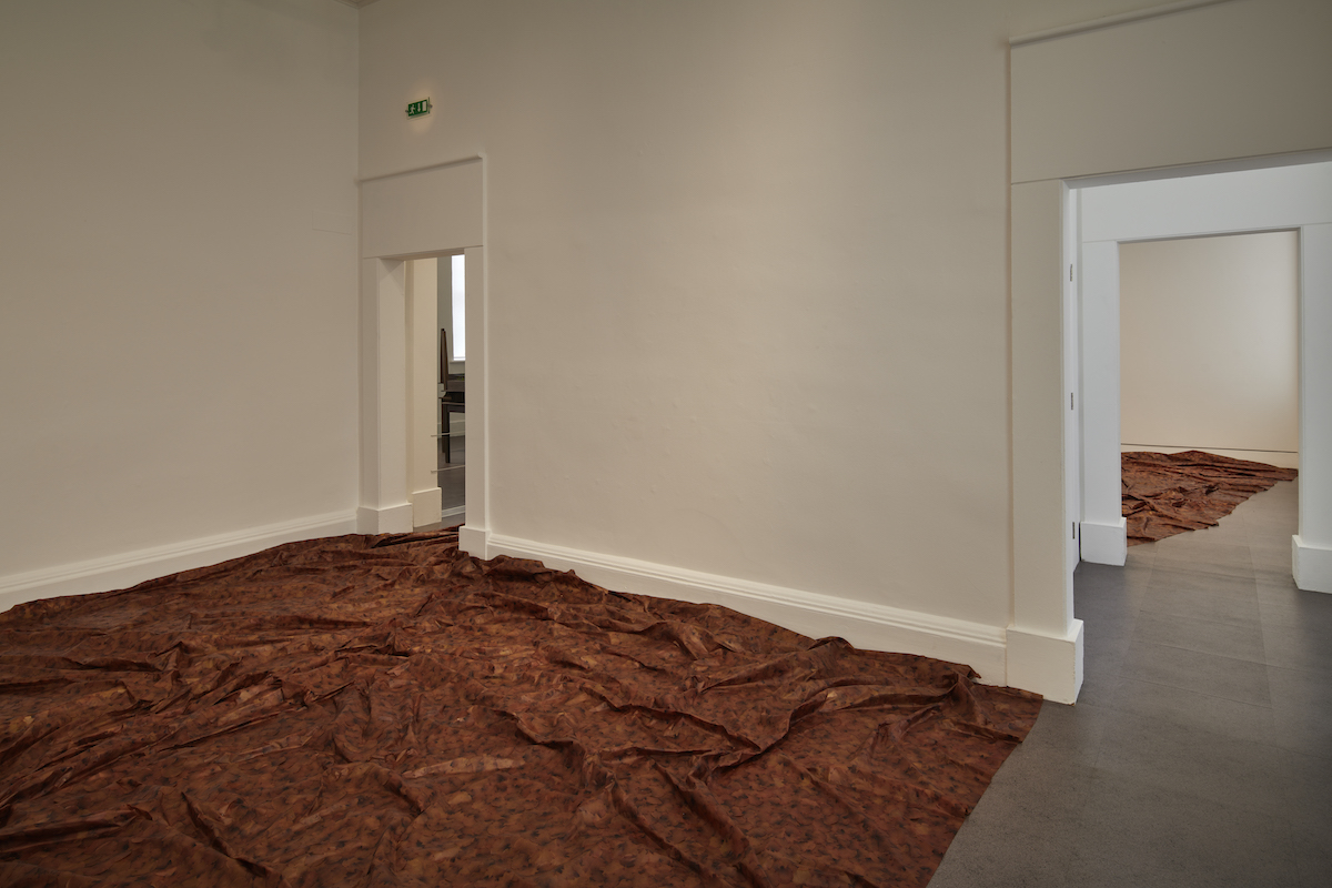 Doris Salcedo, A Flor de Piel II, 2013-14, Rose petals and thread, Dimensions variable, D.Daskalopoulos Collection. Installation view Doris Salcedo, Acts of Mourning, IMMA, Dublin, 2019. Photo: Ros Kavanagh