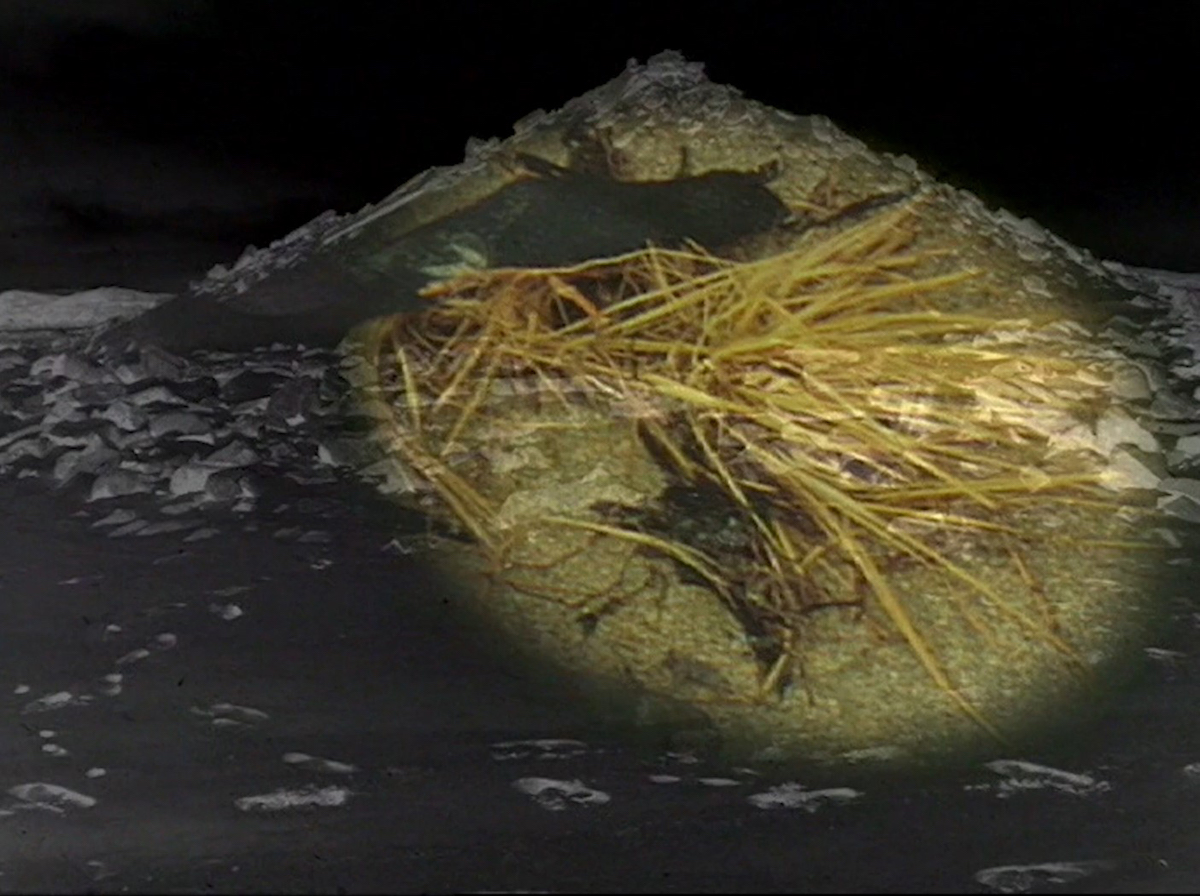 Alanna O'Kelly, Sanctuary/Wastelands, 1994, Video 10min 53sec, Collection Irish Museum of Modern Art, Purchase 1997.